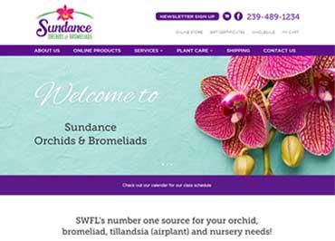 Sundance Orchids
